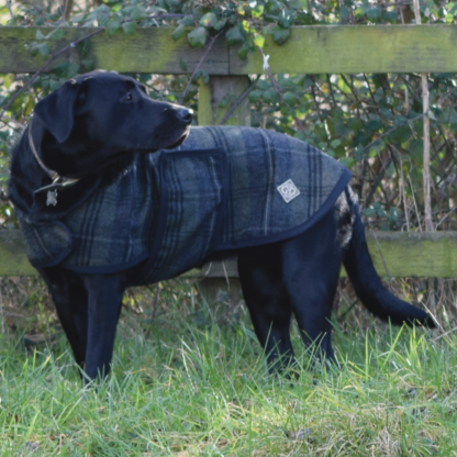 Anya Tweed Dog Coat